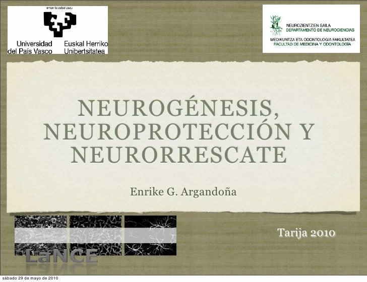 NEUROGÉNESIS,                   NEUROPROTECCIÓN Y                     NEURORRESCATE                             Enrike G. ...