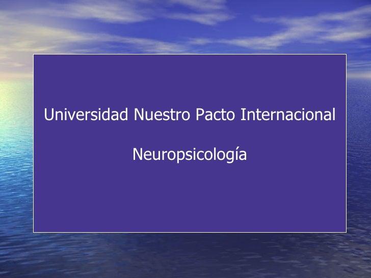 Universidad Nuestro Pacto Internacional Neuropsicología
