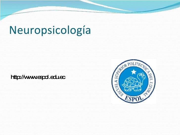 Neuropsicología <ul><li>http://www.espol.edu.ec </li></ul>