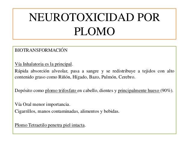 NEUROTOXICIDAD POR PLOMO BIOTRANSFORMACIÓN Vía Inhalatoria es la principal. Rápida absorción alveolar, pasa a sangre y se ...