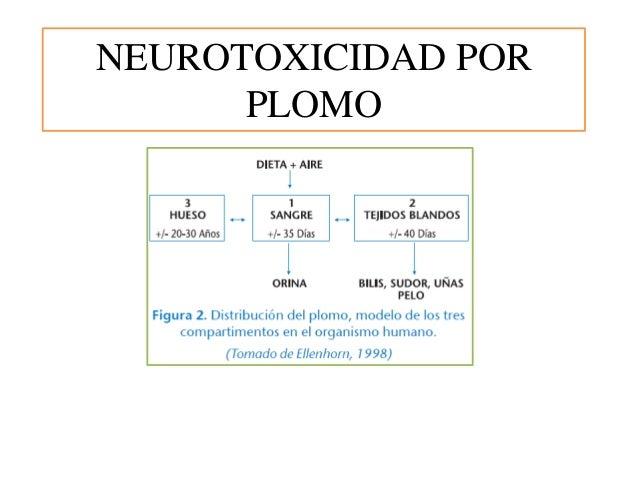 NEUROTOXICIDAD POR PLOMO