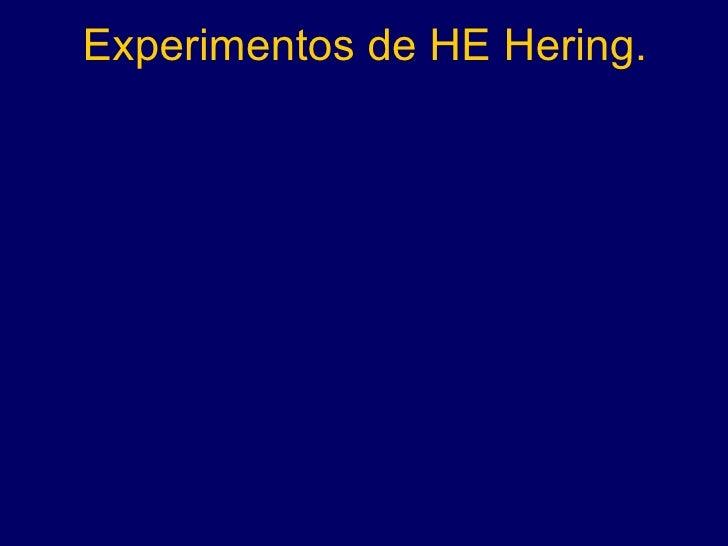 Experimentos de HE Hering.