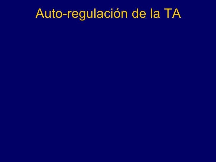 Auto-regulación de la TA