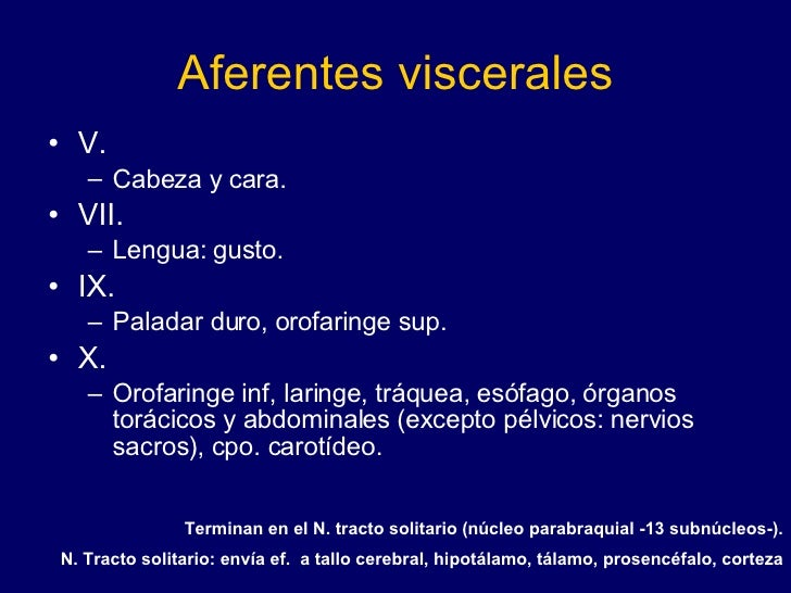 Aferentes viscerales <ul><li>V. </li></ul><ul><ul><li>Cabeza y cara. </li></ul></ul><ul><li>VII. </li></ul><ul><ul><li>Len...