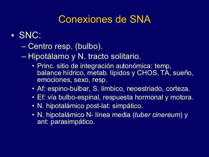 Conexiones de SNA <ul><li>SNC:  </li></ul><ul><ul><li>Centro resp. (bulbo). </li></ul></ul><ul><ul><li>Hipotálamo y N. tra...