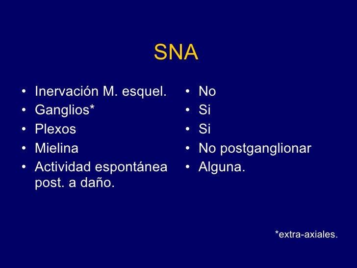 SNA <ul><li>Inervación M. esquel. </li></ul><ul><li>Ganglios* </li></ul><ul><li>Plexos </li></ul><ul><li>Mielina </li></ul...