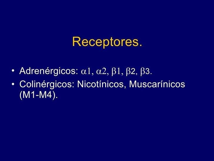 Receptores. <ul><li>Adrenérgicos:   2,   3. </li></ul><ul><li>Colinérgicos: Nicotínicos, Muscarínicos (M1-M4...