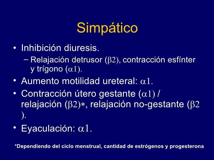 Simpático <ul><li>Inhibición diuresis. </li></ul><ul><ul><li>Relajación detrusor (  contracción esfínter y trígono ( ...