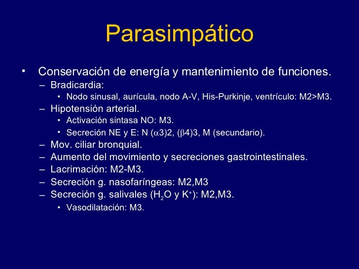 Parasimpático <ul><li>Conservación de energía y mantenimiento de funciones.  </li></ul><ul><ul><li>Bradicardia:  </li></ul...