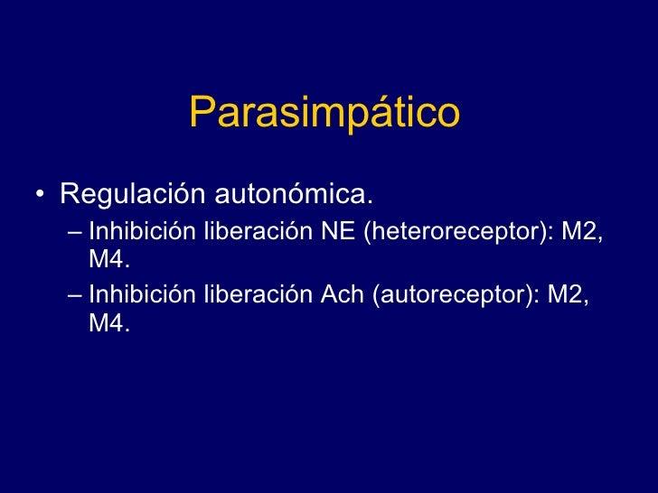 Parasimpático <ul><li>Regulación autonómica. </li></ul><ul><ul><li>Inhibición liberación NE (heteroreceptor): M2, M4. </li...