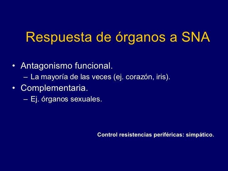Respuesta de órganos a SNA <ul><li>Antagonismo funcional.  </li></ul><ul><ul><li>La mayoría de las veces (ej. corazón, iri...
