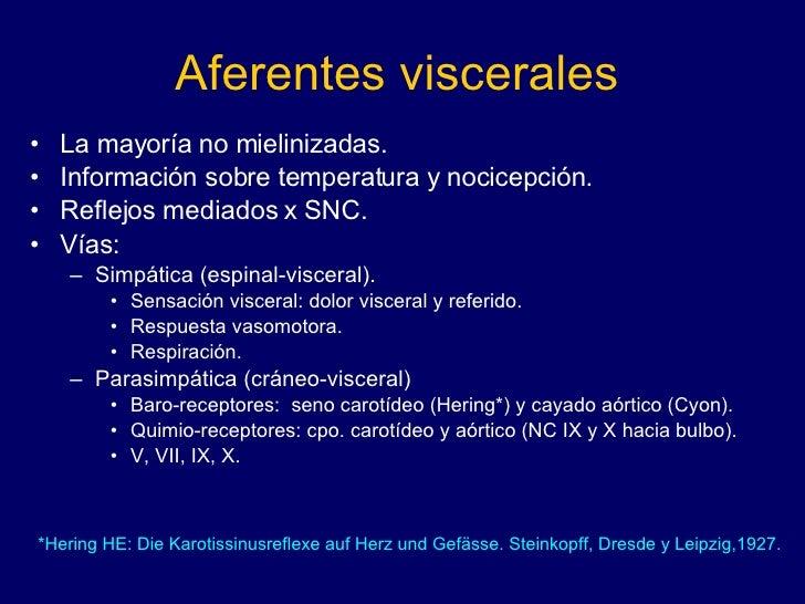Aferentes viscerales <ul><li>La mayoría no mielinizadas. </li></ul><ul><li>Información sobre temperatura y nocicepción. </...