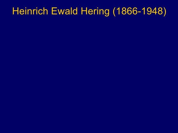 Heinrich Ewald Hering (1866-1948)