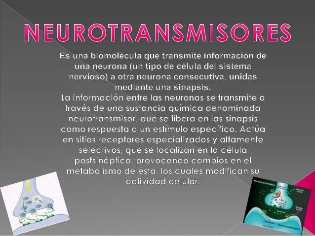 NEUROTRANSMISOR  LOCALIZADOR  Transmisores Grandes Neuropéptidos Péptido -Vaso Activo Intestinal Colecistoquinina  Encéfal...