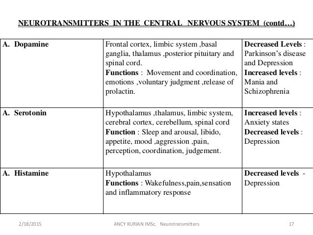 neurotransmitters in the brain and their functions pdf