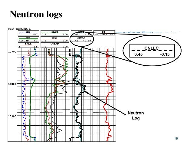 Neutron density and sonic logs
