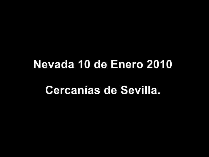 Nevada 10 de Enero 2010 Cercanías de Sevilla.