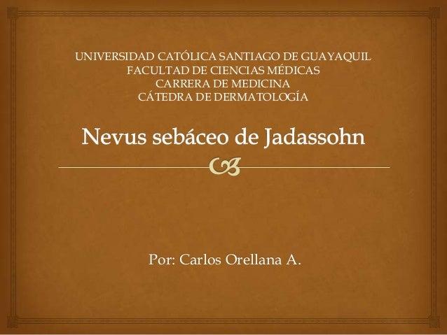 Por: Carlos Orellana A. UNIVERSIDAD CATÓLICA SANTIAGO DE GUAYAQUIL FACULTAD DE CIENCIAS MÉDICAS CARRERA DE MEDICINA CÁTEDR...