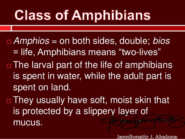""" Amphios = on both sides, double; bios  = life, Amphibians means """"two-lives""""   The larval part of the life of amphibians..."""
