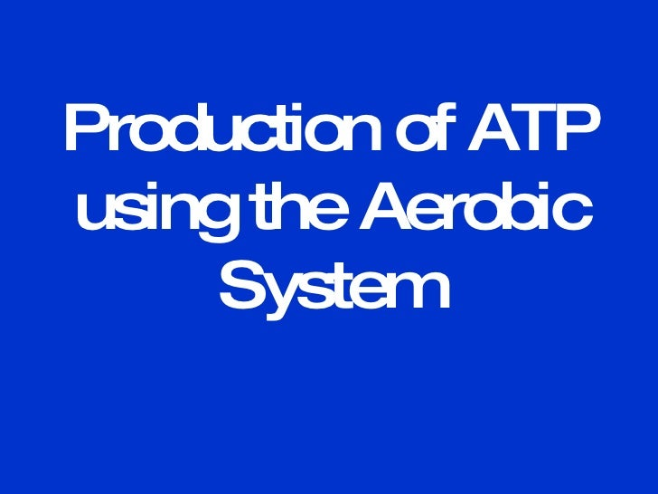 Production of ATP using the Aerobic System