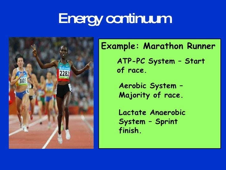 Energy Systems Used When Running