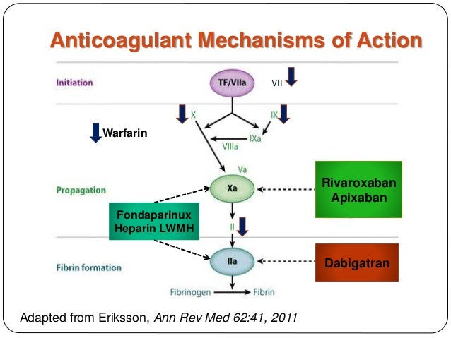 Anticoagulant Defenderauto Info