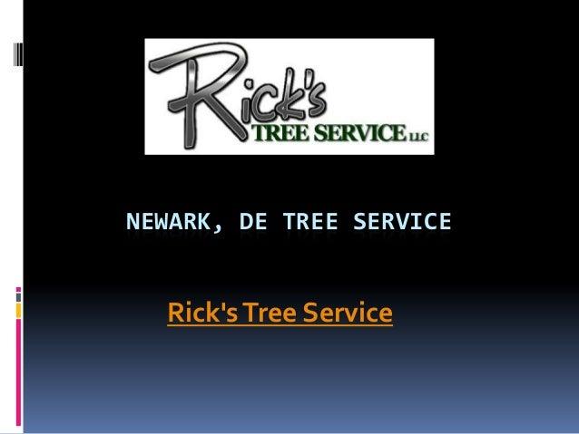 NEWARK, DE TREE SERVICE Rick'sTree Service