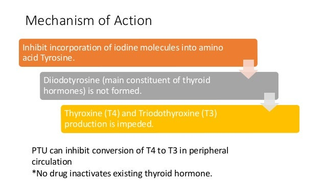 in the metabolism experiment what was the effect of thyroxine on the overall metabolic rate of the a Metabolism: thyroid hormones stimulate diverse metabolic activities most tissues, leading to an increase in basal metabolic rate one consequence of this activity is to increase body heat.
