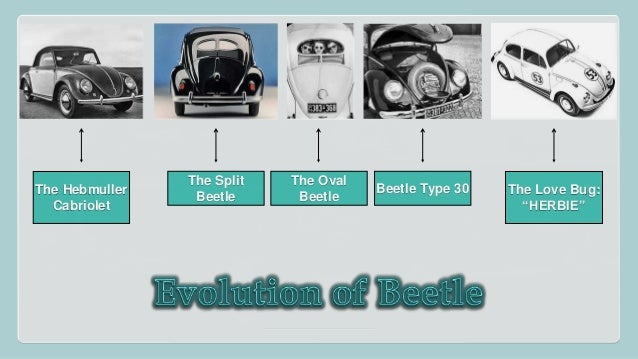 the new beetle case Volkswagen of america introduced the new beetle at the detroit auto show in january 1998 to rave reviews from the automobile press and industry gurus elisabeth vanzura, marketing director.