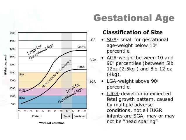Gestational age dating criteria