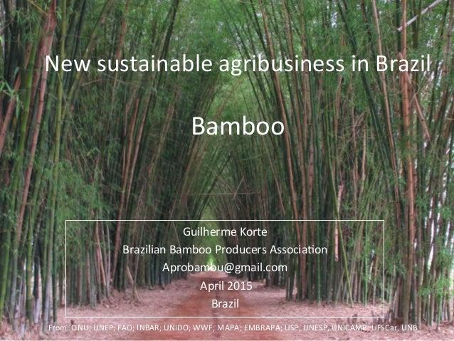 c7fc4ed12c1cc New brazilian sustainable agribusiness bamboo