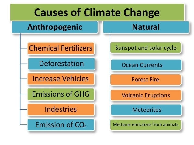 natural causes of climate change Learn about the natural causes of global warming fight climate change global warming they might not be aware that there are other natural global warming causes.