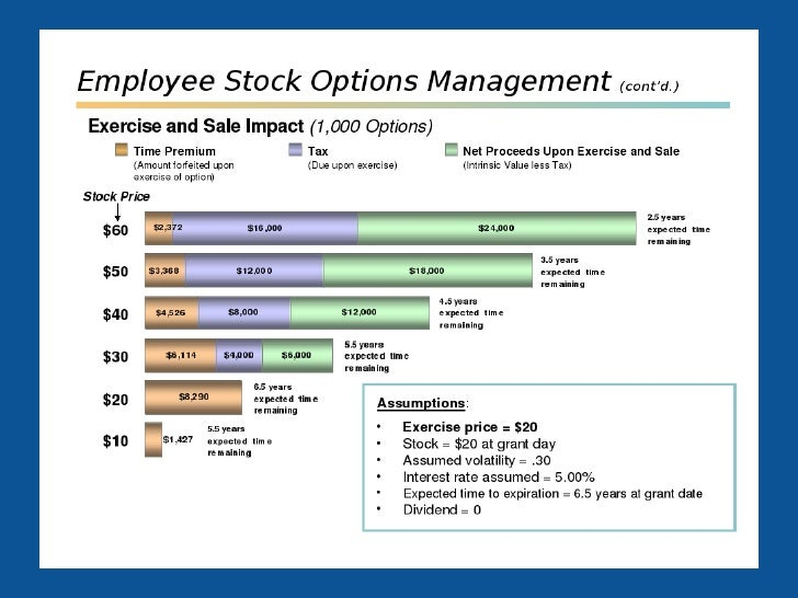 Employee stock options plan example