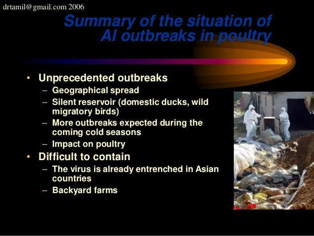 drtamil@gmail.com 2006 Summary of the situation of AI outbreaks in poultry • Unprecedented outbreaks – Geographical spread...