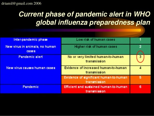 drtamil@gmail.com 2006 Current phase of pandemic alert in WHO global influenza preparedness plan