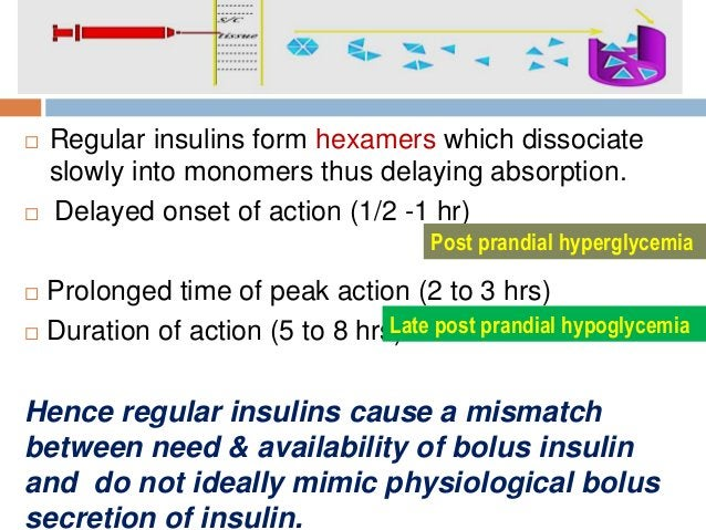  Regular insulins form hexamers which dissociate slowly into monomers thus delaying absorption.  Delayed onset of action...