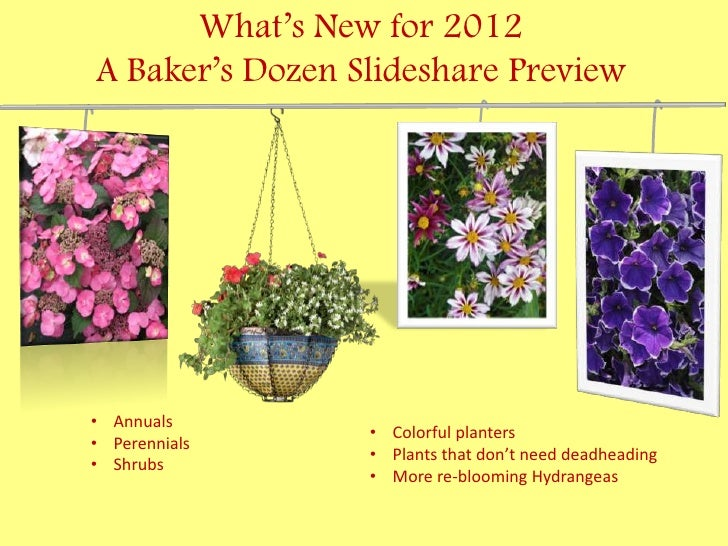 What's New for 2012A Baker's Dozen Slideshare Preview• Annuals                 • Colorful planters• Perennials            ...