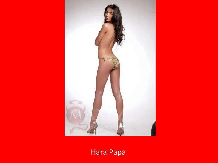 Hara Papa