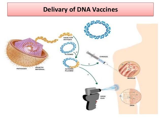 Adjuvants help vaccines work better.
