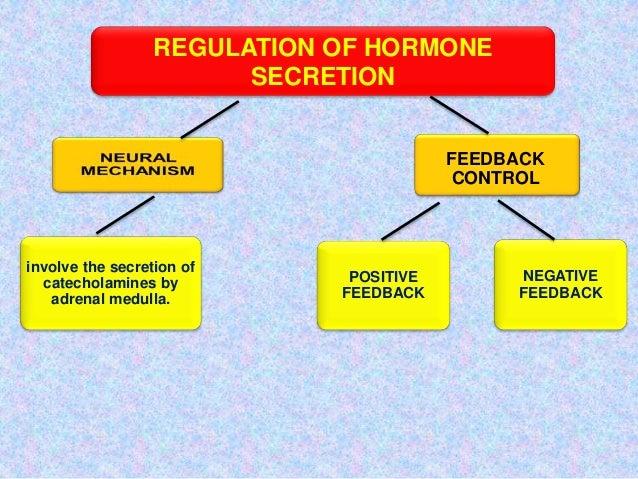 Gnrh Feedback Loop: Hormones: Mechanism Amd Action 2