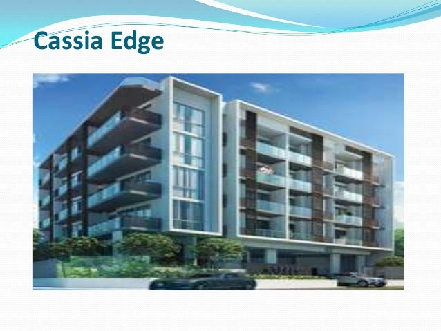 Cassia Edge