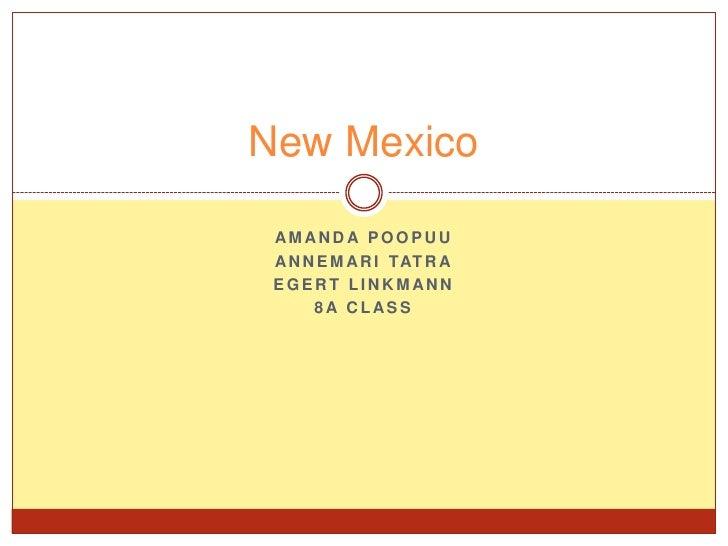 Amanda Poopuu<br />Annemari Tatra<br />Egert Linkmann<br />8a class<br />New Mexico<br />