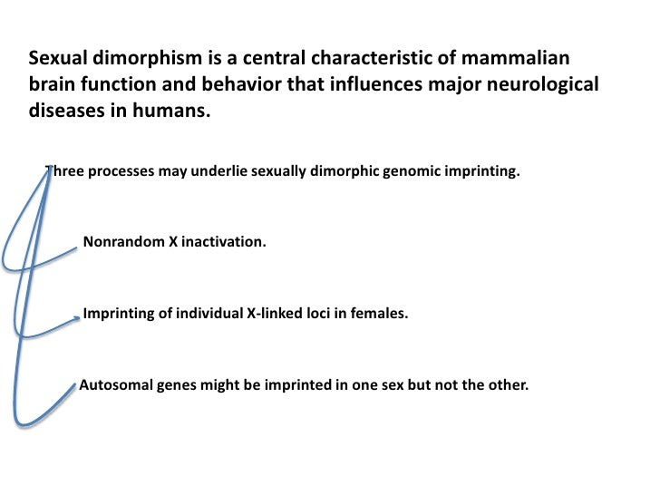 sexual dimorphism behavior Hormones, sexual dimorphism, and the brain—a primer 2012 02 01 many of us think of hormones as the gender specific molecules we learned about in middle.