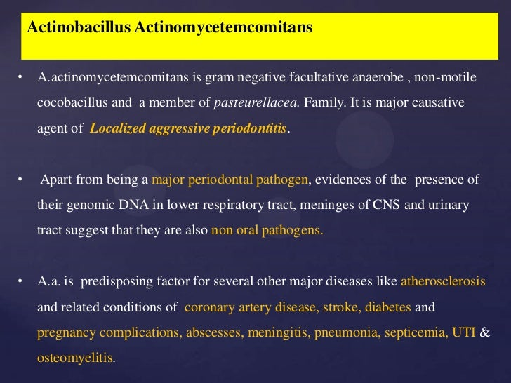 essays on meningitis Essay examples you see on this page are free essays, available to anyone it is not recommended to submit free essays or any of their parts for credit at your school as these are easily detected by plagiarism checkers.