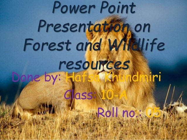 Done by: Hafsa Khundmiri Class: 10-A Roll no.: 05 Power Point Presentation on Forest and Wildlife resources