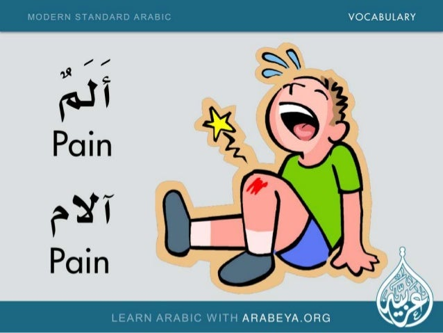 MODERN STANDARD ARABIC VOCABULARY  LEARN ARABIC WITH ARABEYA. ORG