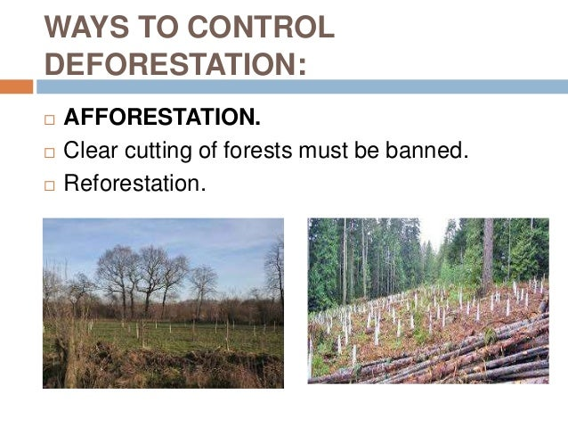 what is afforestation and deforestation