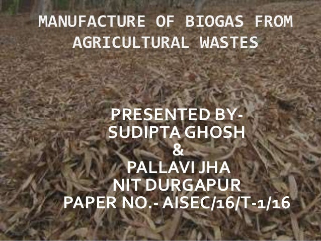 MANUFACTURE OF BIOGAS FROM AGRICULTURAL WASTES PRESENTED BY- SUDIPTA GHOSH & PALLAVI JHA NIT DURGAPUR PAPER NO.- AISEC/16/...