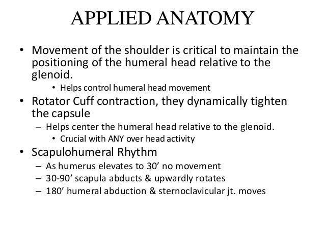 Applied Anatomy Of Shoulder Joint