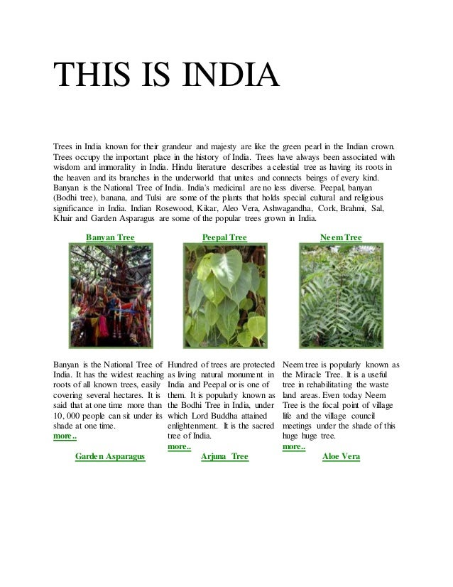THIS IS INDIA Trees in India known for their grandeur and majesty are like the green pearl in the Indian crown. Trees occu...